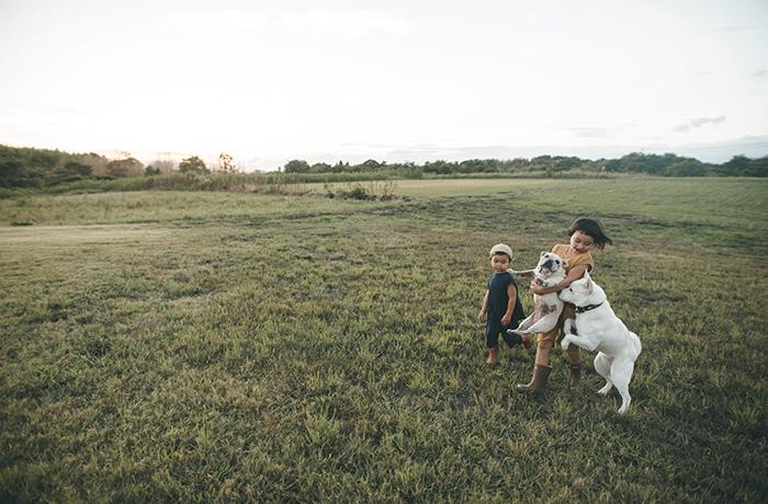 子供と犬との関わりを写した一枚。シンプルに関わり合う犬と人とのふれあいは、見ていて飽きないそう