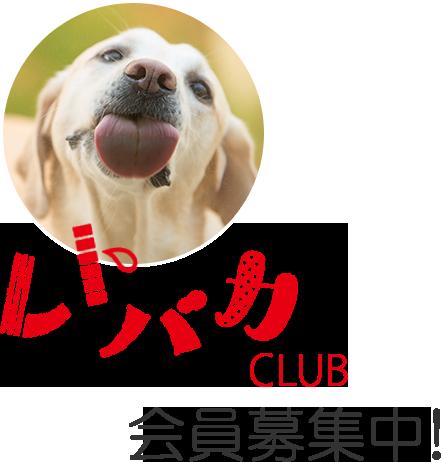 レトバカCLUB会員募集中!